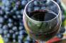 葡萄酒DIY體驗