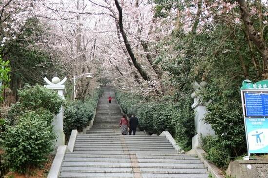 帝皇山公園