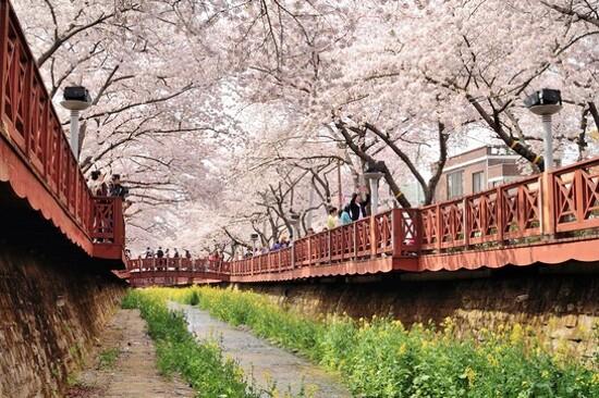 鎮海 余佐川橋