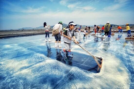 海鹽DIY