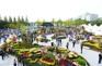 高陽國際花卉博覽會(4月26日至5月12日出發適用)