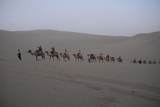騎駱駝體驗