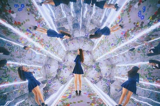 Mirror  Garden 鏡子庭園