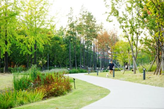 延南洞林蔭公園