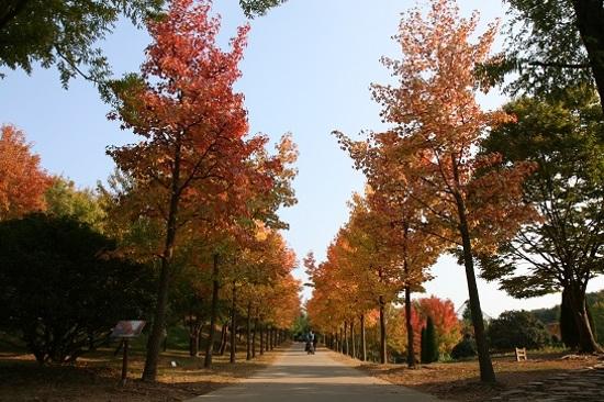 晉州慶南樹木園