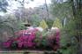 卡德奈特峽谷吊椅