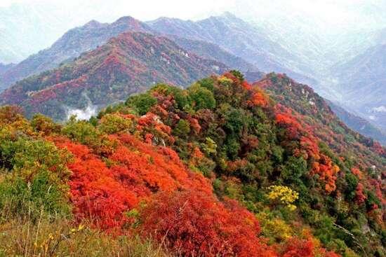 圭峰山國家森林公園