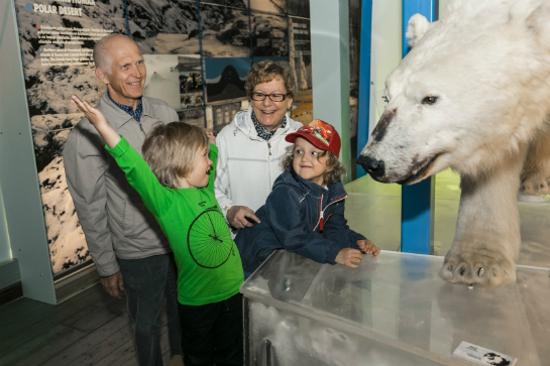 Arktikum極地中心及省立博物館