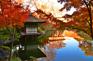 和歌山紅葉渓庭園