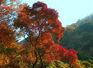 石門國家森林公園