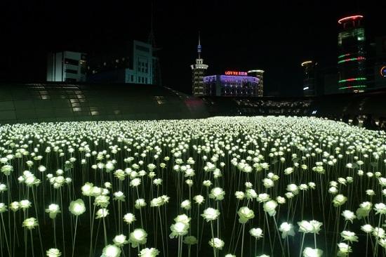 東大門設計廣場 (限定LED玫瑰花海)