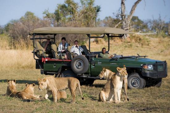 高比野生動物保護區