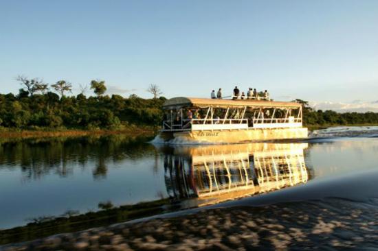 乘船穿梭沼澤區