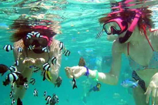 ABC沙灘俱樂部徒手浮潛