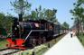 白塔公園-小火車