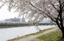 北川市民公園