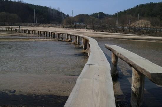 Museom村(春季)