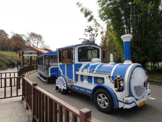 天遊峰小火車