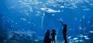 Atlantis Sanya Hote-