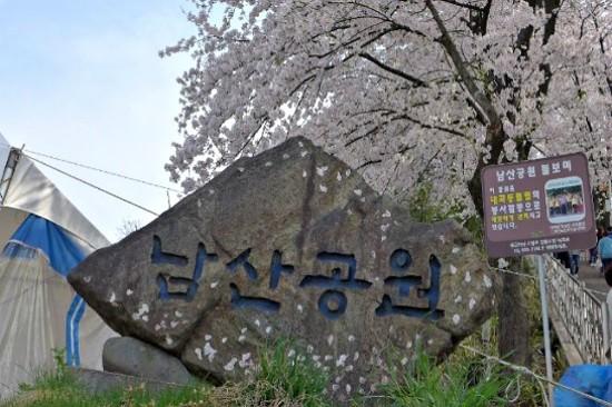 江陵南山公園