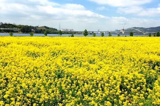 九里漢江公園