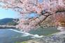 嵐山風景區