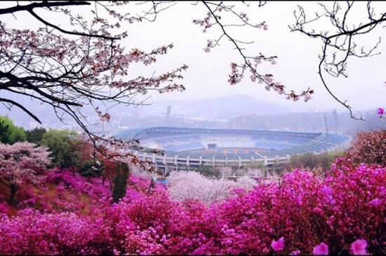 富川遠美山