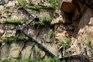 五指石風景區