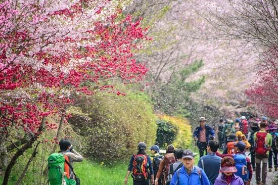 長福山公園