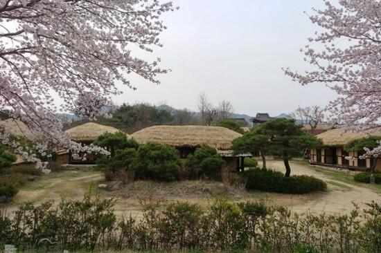 安東河回村(芙蓉臺)