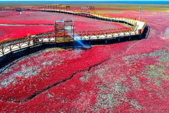 紅海灘國家風景廊道
