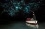 懷托摩鐘乳石洞及螢火蟲洞 (2)