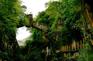 天星橋風景區
