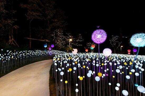 利川宇宙星光庭園