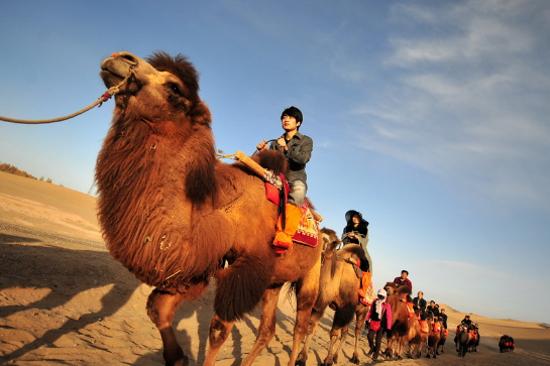 月牙泉騎駱駝體驗
