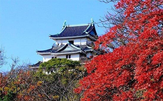和歌山城紅葉