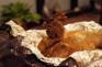 馳名瓦窯焗雞