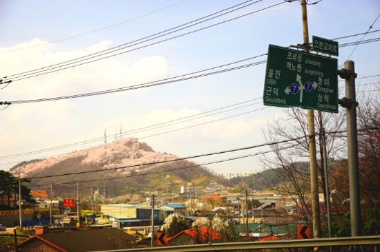 三陟鳳凰山