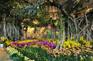 花之城景區-大型花卉主題溫室