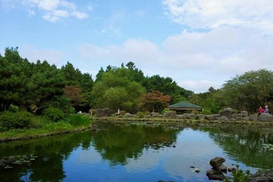 寺水自然修養林