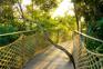 森林中的塊寶~神玉島