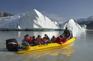 塔斯曼冰河之旅 (2)