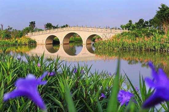華陽湖濕 地公園