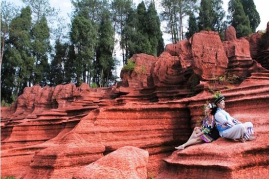 紅石林-奧陶海底
