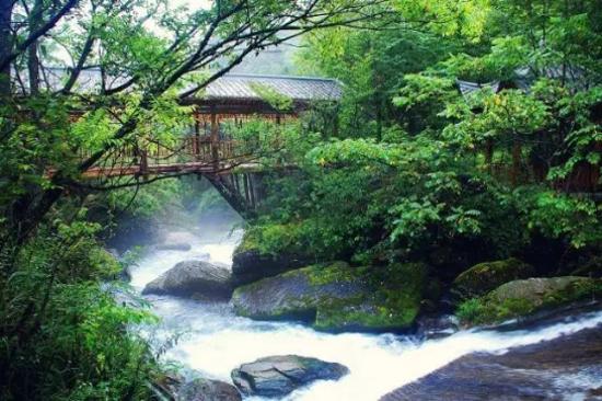 官門山~香溪源瀑布溪流