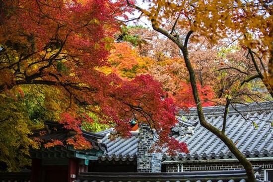 「UNESCO世界文化遺產」佛國寺