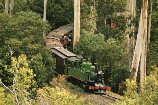 墨爾本PuffingBilly古董蒸氣火車