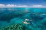 大堡礁浮潛