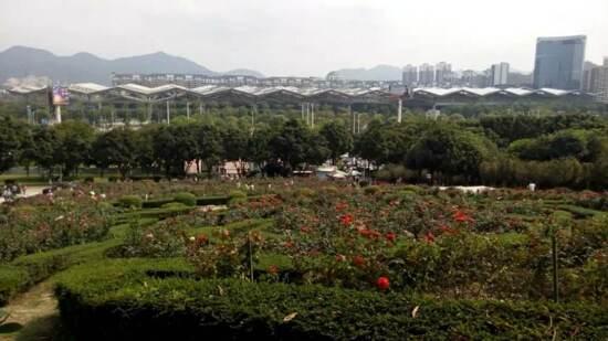 紫馬嶺玫瑰園