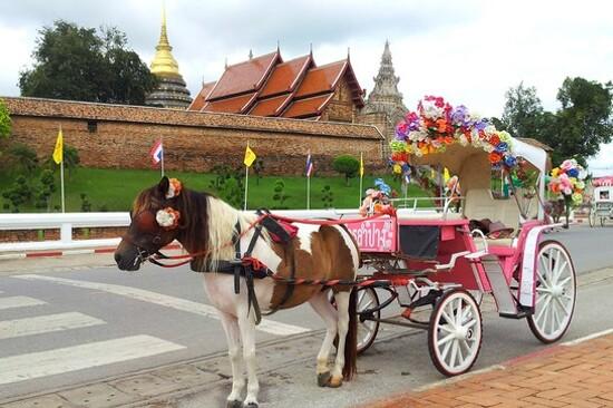 喃邦乘馬車遊城